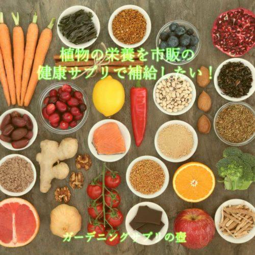 【サプリメントや酵素ドリンクは便利なもの】植物の栄養を市販の健康サプリで補給したい!