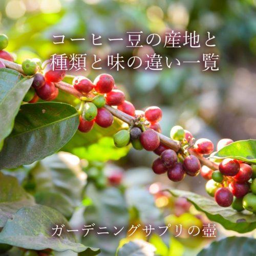 【品種と産地の組み合わせで味が違う?】コーヒー豆の産地と種類と味の違い一覧